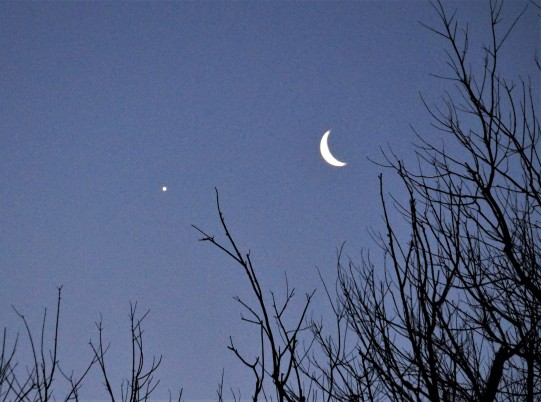 Waning Crescent Moon and Venus in Sagittarius Jan 31, 2019